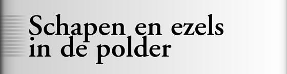 Wielerexpress 2008 - Schapen en ezels in de polder